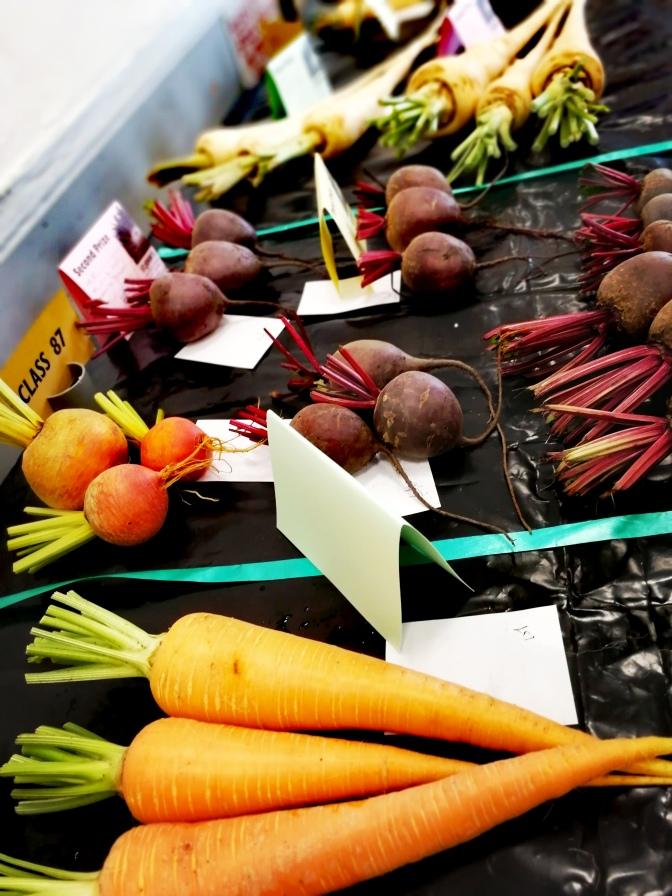 Veg, vegetables, show class, gardens, growing,