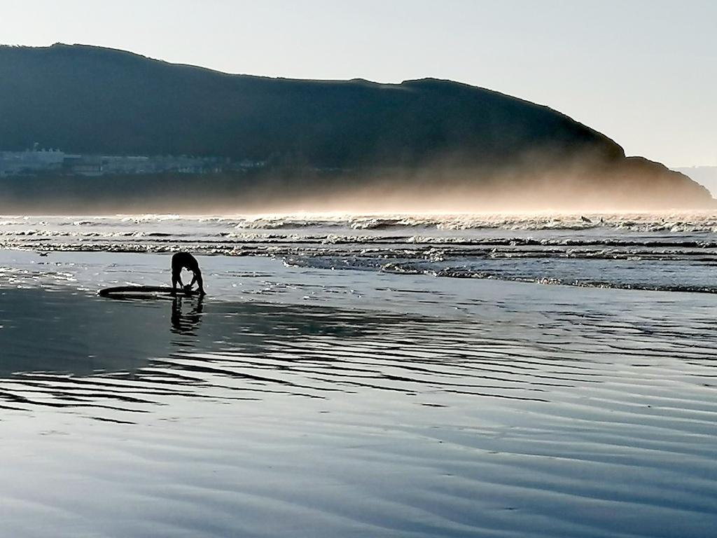 Norham Burrows, Dog friendly, walks, history, nature,