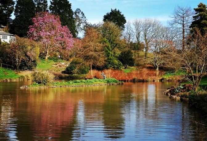 Gardens, trees, lakes, tearoom, statues,